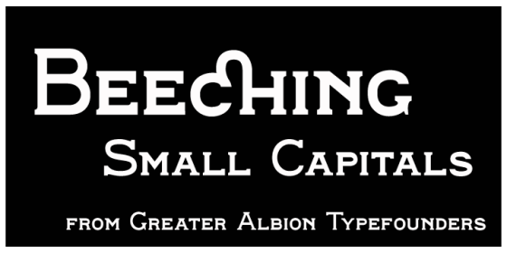 Beeching_Poster2