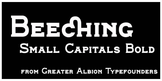 Beeching_Poster4