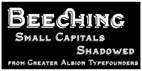 Beeching_Poster6