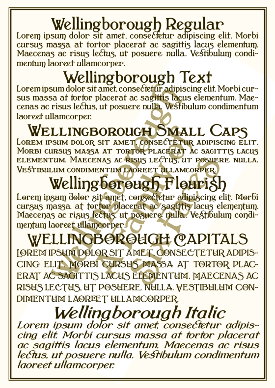Wellingborough_Gallery_0