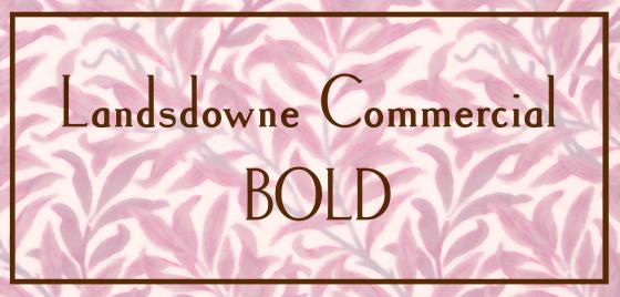 Landsdowne-Commercial4
